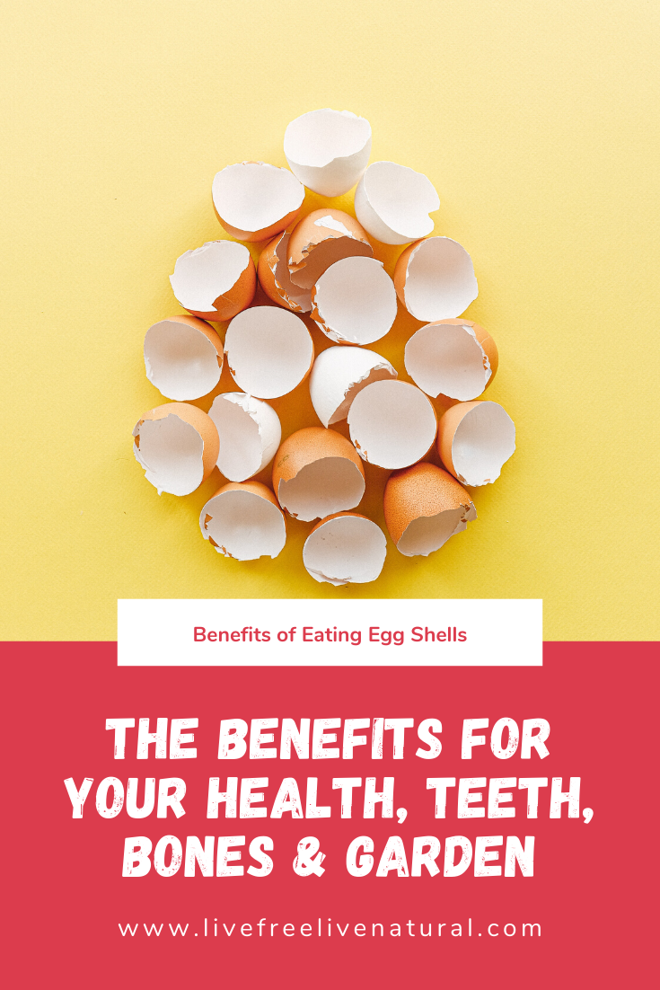 Eating Egg Shells The Benefits for Your Health