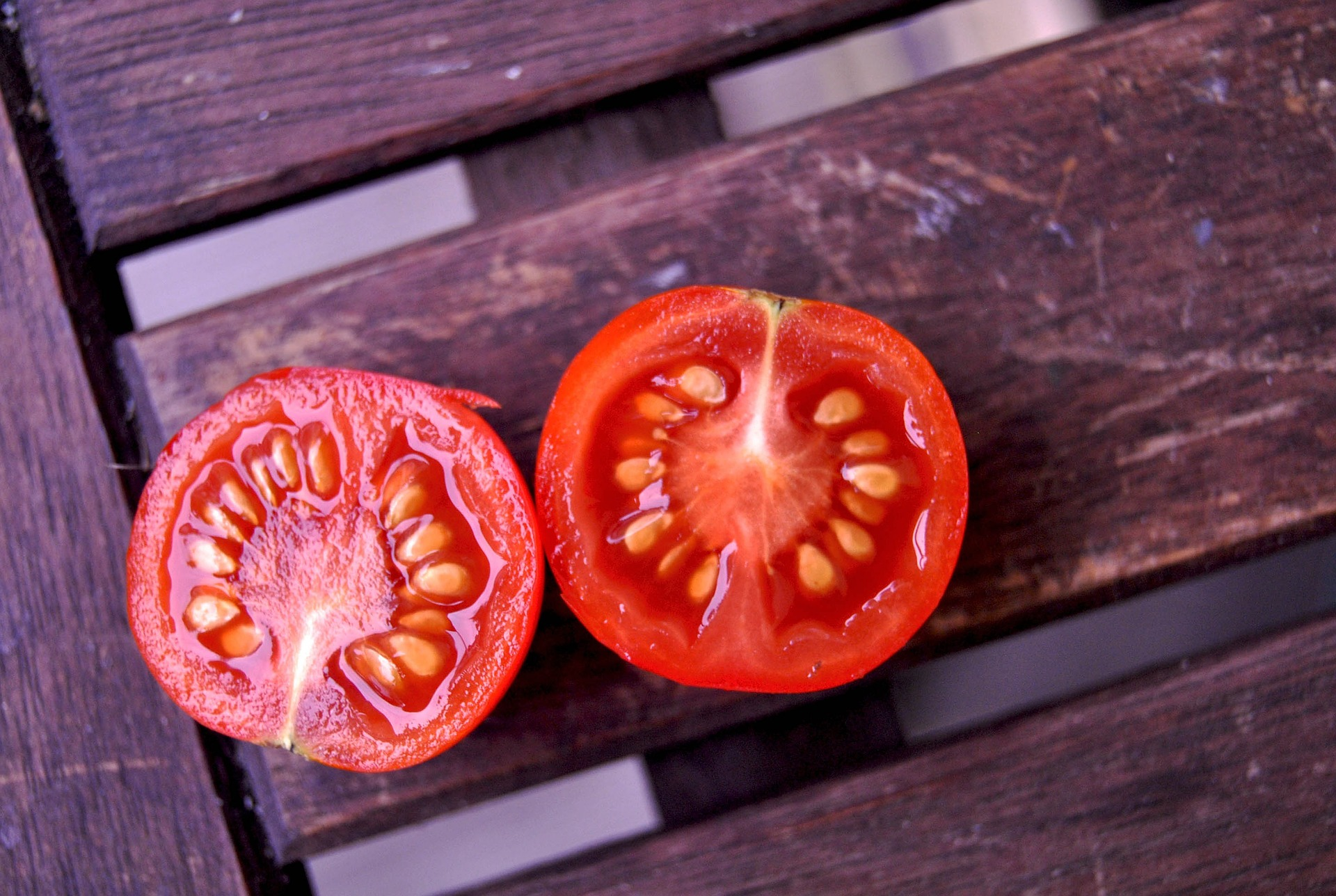 Saving Tomato Seeds